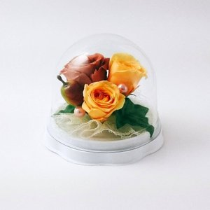 プレゼント ギフト【シェリハウス】 ドーム プリザーブドフラワー 茶|shopfreddo