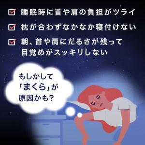 低反発枕 トゥルースリーパー セブンスピロー シングル・セミダブル用 送料無料 肩こり対策 まくら ミニ低反発マットレス付|shopjapan|02