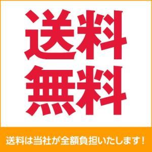 ワンダーコア 2 本格エクササイズセット ショップジャパン 公式 正規 ダイエット お腹 腹筋 エクササイズ 運動器具 トレーニング器具|shopjapan|02