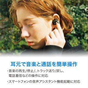 パイオニア Pioneer 完全ワイヤレスイヤホン SE-C8TW Bluetooth対応 左右分離型 マイク付き ブラック SE-C8TW shopnoa