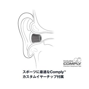 DENON ワイヤレスイヤホン Bluetooth対応/防汗・防滴仕様/マイク付 ブルー AH-C160W-BU|shopnoa