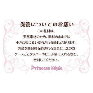 ミニ かすみ草 ドライフラワー (12色ちょっとずつ/セット)|shopnoa