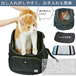 ペットキャリーリュック 猫 キャリーバッグ 小型犬 リュック 軽量 撥水 折畳可 散歩 通院 防災 避難 旅行用 きゃりーバッグ ブラック|shopnoa