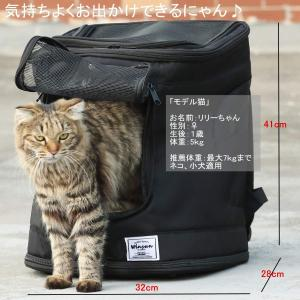 猫 キャリーバッグ ペットキャリー リュック 小型犬 散歩 通院 防災 避難 旅行用 ペット きゃりーバッグ 軽量 撥水 折畳 キャリーリュ|shopnoa