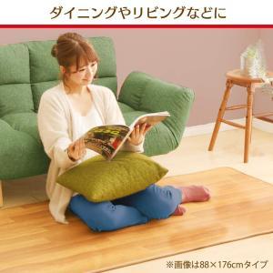アイリスオーヤマ ホットカーペット 木目調 45×110cm HCM-1105FL-M|shopnoa