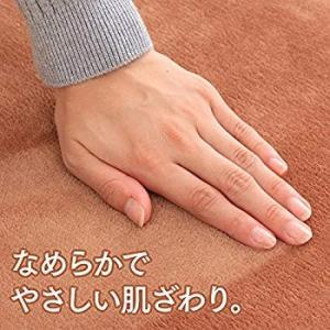 アイリスオーヤマ ホットマット 40×40cm ブラウン HCM-40S-T|shopnoa
