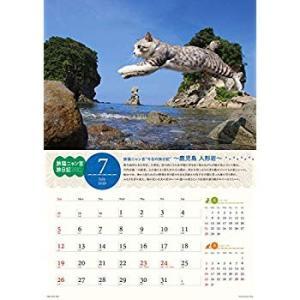 ウイング 旅猫ニャン吉 旅日記 2020年 カレンダー CL-402 壁掛け 猫