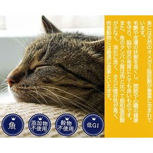 Fish4Cats フィッシュ4キャット イワシ 400g|shopping-hers|04