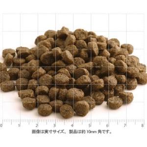 Fish4Dogs フィッシュ4ドッグ コンプリートサーモン小粒 6kg 賞味期限2021.01.21+75gx2袋|shopping-hers|03