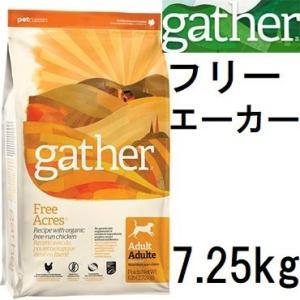 Gather ギャザー フリーエーカー 7.25kg+ジウィピークチキン20gx2袋|shopping-hers