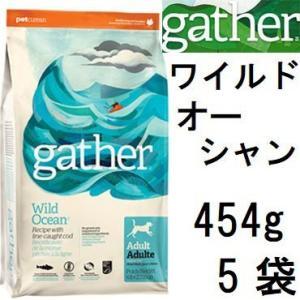 Gather ギャザー ワイルドオーシャン 454gx5袋+フィッシュ4シージャーキー15g|shopping-hers