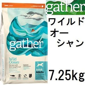 Gather ギャザー ワイルドオーシャン 7.25kg+Fish4オーシャンホワイト75g|shopping-hers