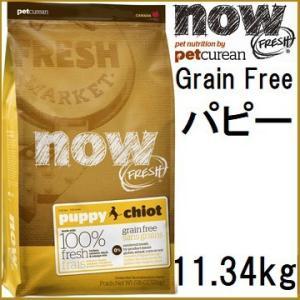 NOW FRESH ナウ フレッシュ Grain Free パピー 11.34kg 賞味期限2020.05.16+アーテミスパピー60gx2袋|shopping-hers