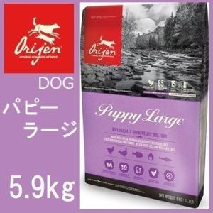 Orijen オリジン パピーラージ 大型幼犬用 5.9kg|shopping-hers