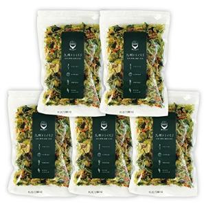 5袋セット)九州ドライベジ 乾燥野菜 九州産 野菜&わかめ ミックス 100g 5袋入り