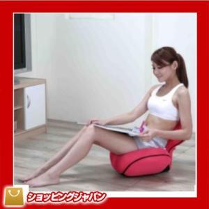 座椅子 ピュアフィット purefit  ゆらゆら姿勢座椅子 PF2300 c|shoppingjapan