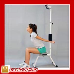 座椅子 ピュアフィット purefit  スッキリのばし健康器 PF5000 c|shoppingjapan