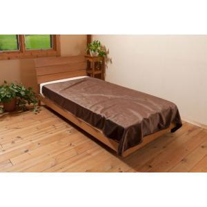 エコでウォーム 毛布 シングル約150×200cm 毛布 ひざ掛け 発熱 保温 c|shoppingjapan