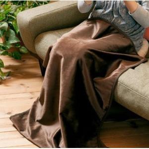 エコでウォーム ひざ掛け M ブランケット 毛布 発熱 保温 c|shoppingjapan