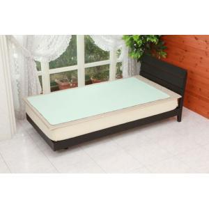 除湿シート ドライでクリーン セミ ダブル約 110×190cm湿気 敷きパッド c|shoppingjapan