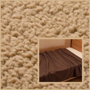 エバーウォーム 毛布ダブル約180×200cm エコ 保温 発熱 c|shoppingjapan