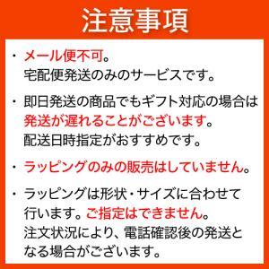 ギフト包装サービス(簡易ラッピング・のし紙・メッセージカード)※メール便不可 shopsorairo 02