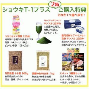 タンポポ茶 ショウキT−1プラス 60袋 (30袋×2箱)  ショウキT1 plus たんぽぽ茶 shopsorairo 02
