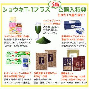 タンポポ茶 ショウキT−1プラス 90袋 (30袋×3箱)  ショウキT1 plus shopsorairo 02