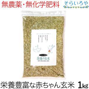 薬膳のお米 1kg 栄養価の高い赤ちゃん玄米 無農薬 無化学肥料 西日本産|shopsorairo