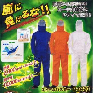 送料無料 コチラの商品は当店通常価格3680円のところセール価格2000円送料無料です。在庫に限りが...