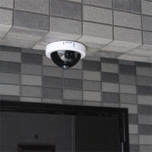 防犯カメラ風センサーライト|shoptakumi