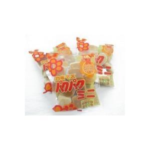 パクパクミニ 90g×16袋入り 代引き不可|shoptakumi