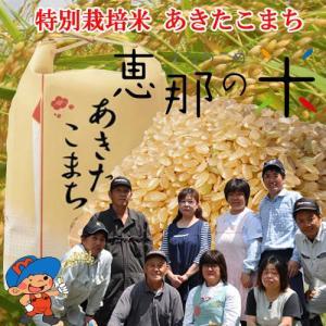 恵那の米 岐阜県恵那産特別栽培米 恵那のあきたこまち 10k...