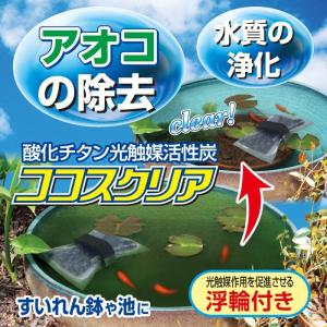 アオコの除去 ココスクリア 浮輪付き|shoptukiusagi