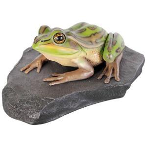 FRP動物オブジェ 岩の上でくつろぐキンスジアメガエル shoptukiusagi