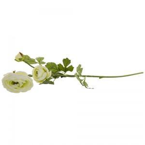 キンポウゲの花 緑 M shopv