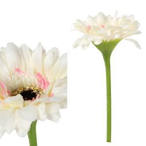 FLOWER ミニガーベラ/ホワイト shopv