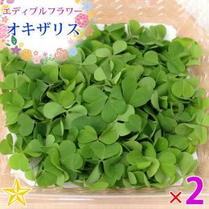 食用の葉 オキザリス クローバー型 山梨県 富士吉田産 約10g×2パック|shopvision
