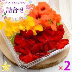 食用花 食べる花 エディブルフラワー ゼラニウム ナスタチウム 詰め合わせ 約20輪×2パック 山梨県 富士吉田産|shopvision