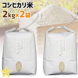 お米 武川米 農林48号 100% 山梨県 北杜市産 コシヒカリ 2kg×2袋 ご自宅用|shopvision