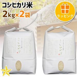 お米 武川米 100% ギフト 山梨県 北杜市産 コシヒカリ 2kg 2袋 贈答用ラッピング|shopvision