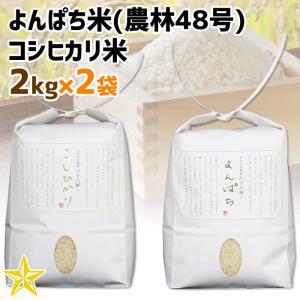 お米 武川米 農林48号 100% 山梨県 北杜市産 よんぱち米 2kg コシヒカリ 2kg|shopvision