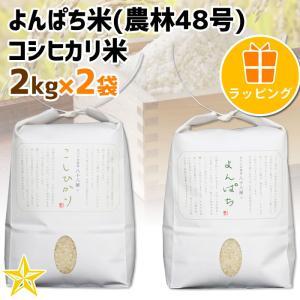 お米 武川米 農林48号 100% ギフト 山梨県 北杜市産 よんぱち米 2kg コシヒカリ 2kg 贈答用ラッピング|shopvision