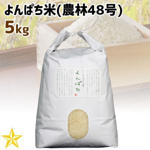 お米 武川米 農林48号 100% 山梨県 北杜市産 よんぱち米 5kg|shopvision