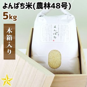 お米 武川米 農林48号 100% ギフト 山梨県 北杜市産 よんぱち米 5kg 木箱入り|shopvision