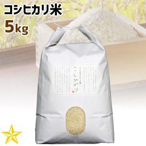 お米 武川米 100% 山梨県 北杜市産 コシヒカリ 5kg ご自宅用|shopvision