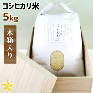 お米 武川米 100% ギフト 山梨県 北杜市産 コシヒカリ 5kg 木箱入り|shopvision