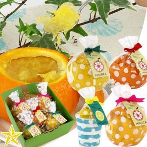 ゼリー 皮の器 まるごと フルーツゼリー グレープフルーツ 甘夏 レモン 5個入 季節限定セット|shopvision