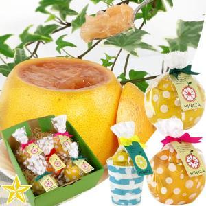 ゼリー 皮の器 まるごと フルーツゼリー グレープフルーツ レモン 5個入 爽やかセット|shopvision