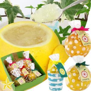 ゼリー 皮の器 まるごと フルーツゼリー グレープフルーツ レモン 5個入 酸っぱいセット|shopvision